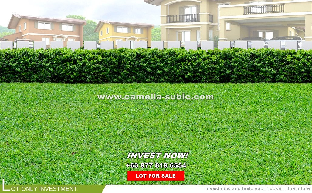 Lot House for Sale in Subic